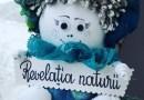 """Concurs """"Revelatia Naturii"""""""