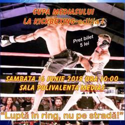 17 cluburi participa la Cupa Mediasului la Kickboxing