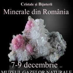 Expozitia Mineralia