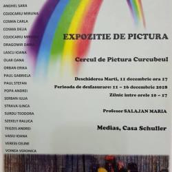 Expozitie de pictura la Casa Schuller din Medias