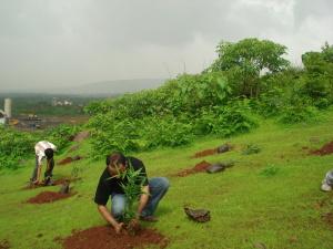 Initial Planter