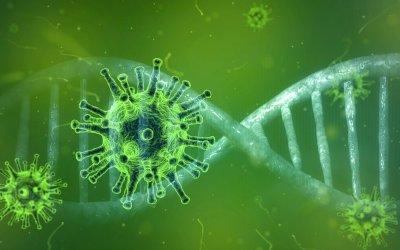 La pandemia, rilievi e considerazioni