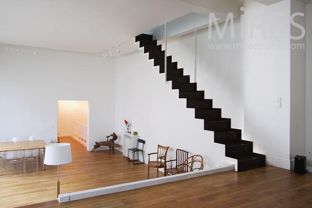 Escalier Noir Et Blanc Suspendu C0807 Mires Paris