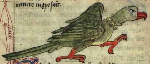 Средневековый бестиарий, часть 1 6