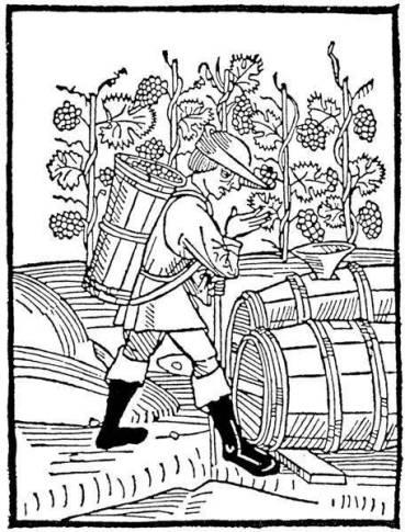 making_wine[1]
