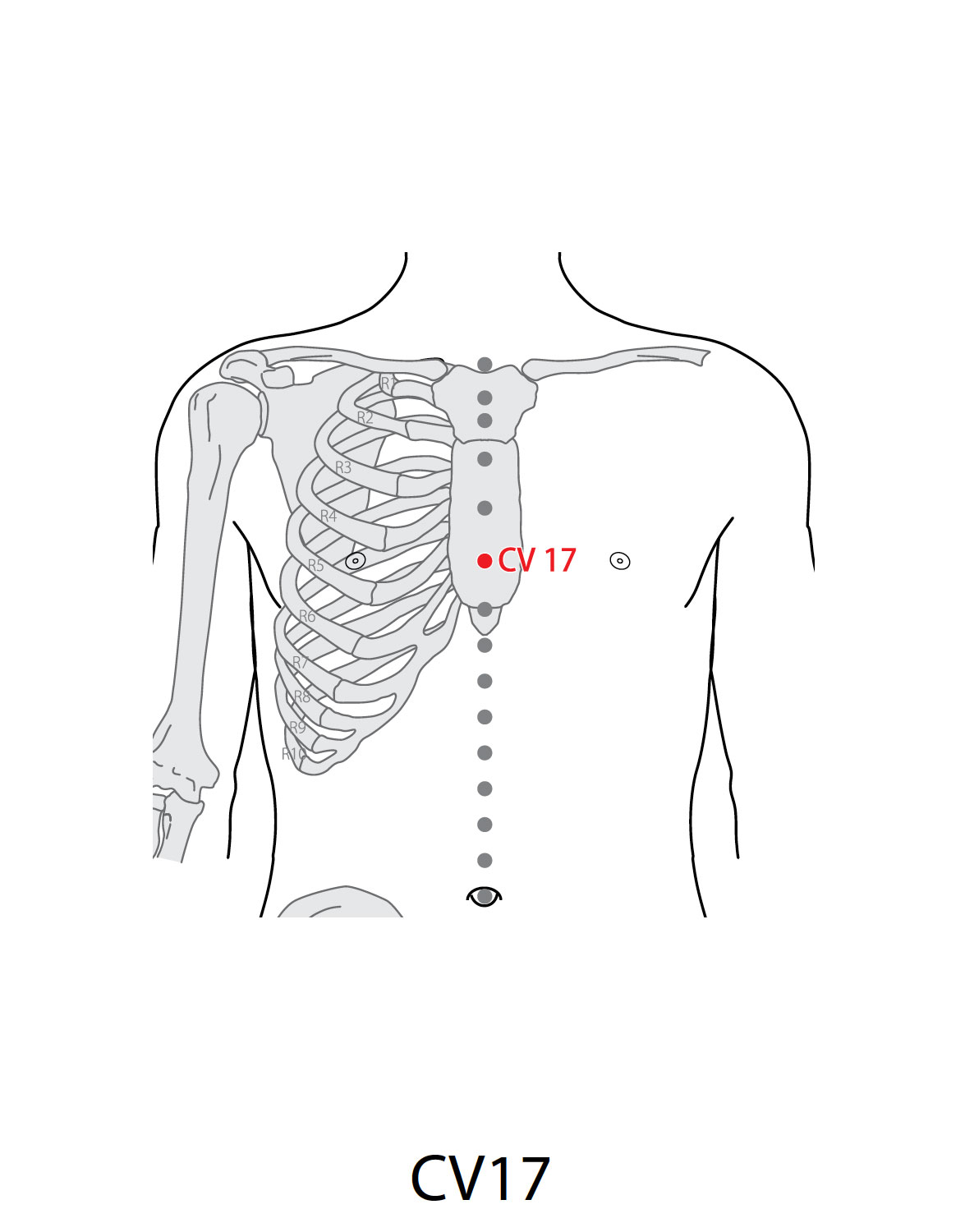 Acupuncture Point Conception Vessel 17