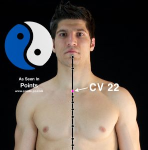 Acupuncture Point CV22