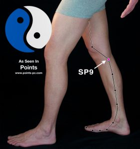 Acupuncture Point SP 9