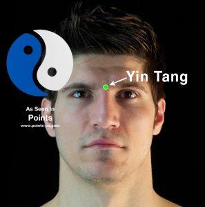 Ref_YinTang