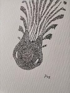 #zebra, nose, number