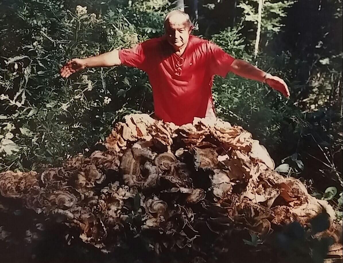 Profesor Romano Božac uveo nas je u svoje tajnovito kraljevstvo sa 1.500 vrsta gljiva