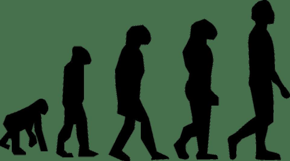 [12.2.] Međunarodni dan Charlesa Darwina, oca teorije evolucije