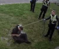 policija zlostavljanje