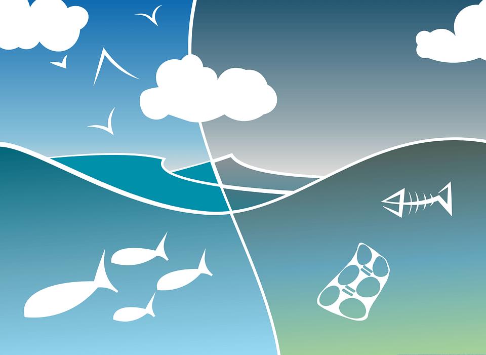 [8.6.] Danas je Svjetski dan oceana: Ovih 7 činjenica o tome koliko ga zagađujemo će vas šokirati