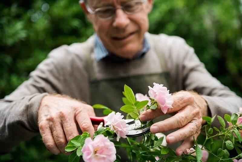 Umirovljenici u velikoj akciji čišćenja i pripremanja staklenika za cvijeće
