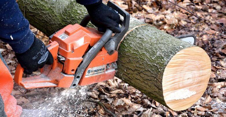 Umirovljenik (84) rušio hrast, stablo se okrenulo i palo na 58-godišnjakinju