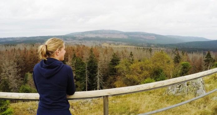 Natuur in de Harz