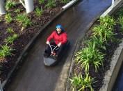 Adrenaline, Skyline Luge, Rotorua, North Island