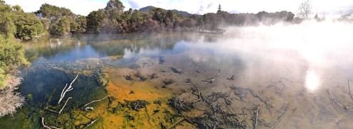 Natural thermal park, Kuirau, Rotorua, North Island