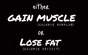It's Either 'Gain Muscle' Or 'Lose Fat'