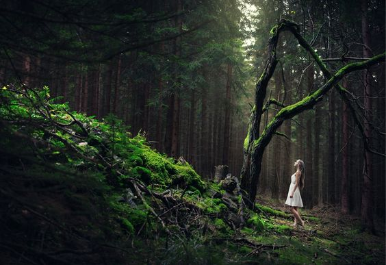 how to love a daughter of the forest