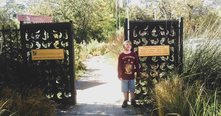 Stellenbosch Botanical Gardens
