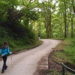 Paseo por Camino de Santiago de Urdax en Amaiur