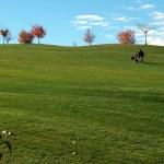 Campo de Golf de Gorraiz