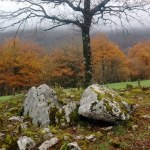 Dolmen de Milaldapa I (Oderitz)