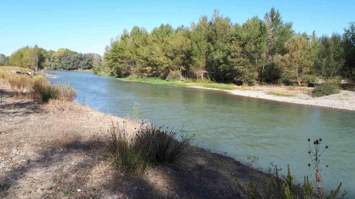 Río Aragón en Marcilla