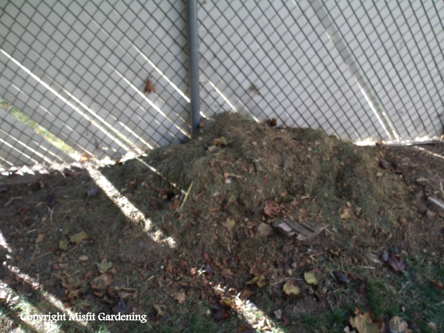 The original compost pile