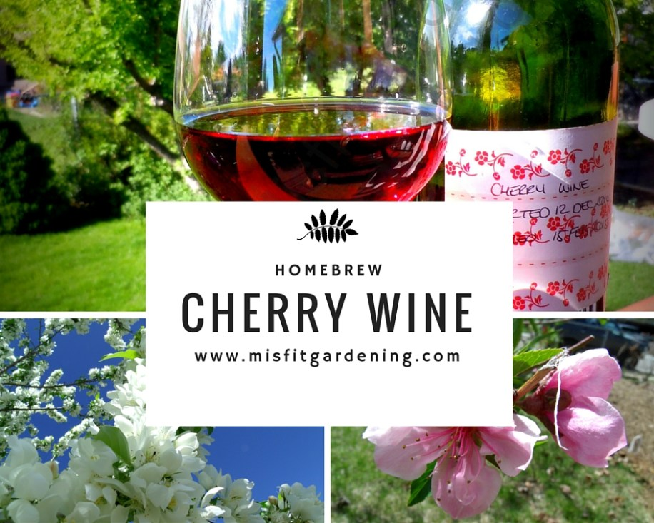Home brew cherry wine recipe