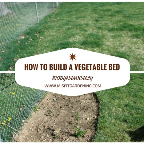 How To Build A Vegetable Bed Biodynamically