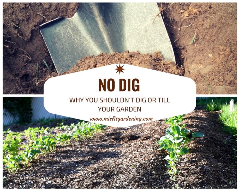 no dig gardening benefits