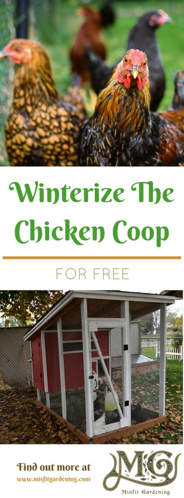 How to winterize your chicken coop for free. Click to find out more or pin it and save for later.