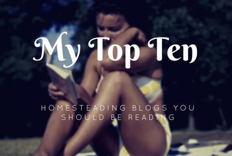 my ten top homesteading blogs you should be reading