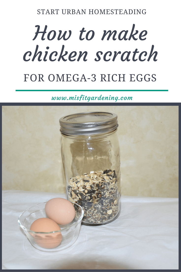 How to make chicken scratch for omega-3 rich eggs