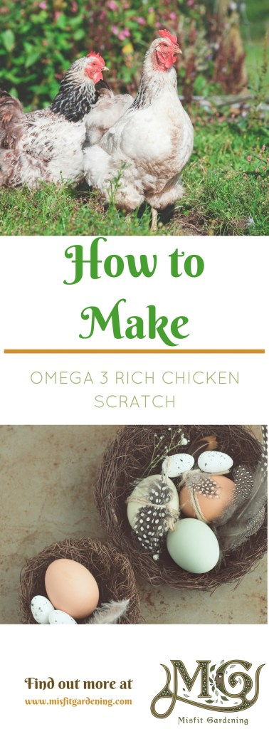 How to make omega 3 rich chicken scratch. Click to find out how to start making chicken food or pin it and save for later