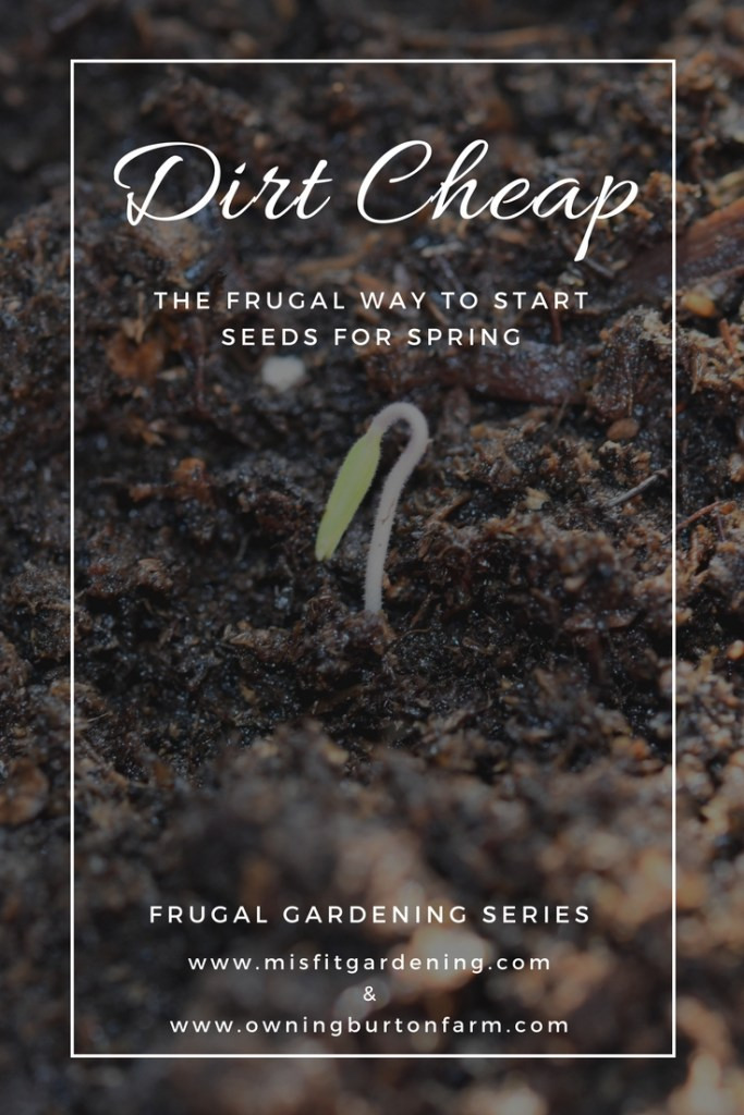 Frugal Gardening Series find out how to start seeds cheap using recycled containers to make seed starter trays and DIY mini greenhouses to get started on your garden.  Pin it to save for later or click through to find out more.