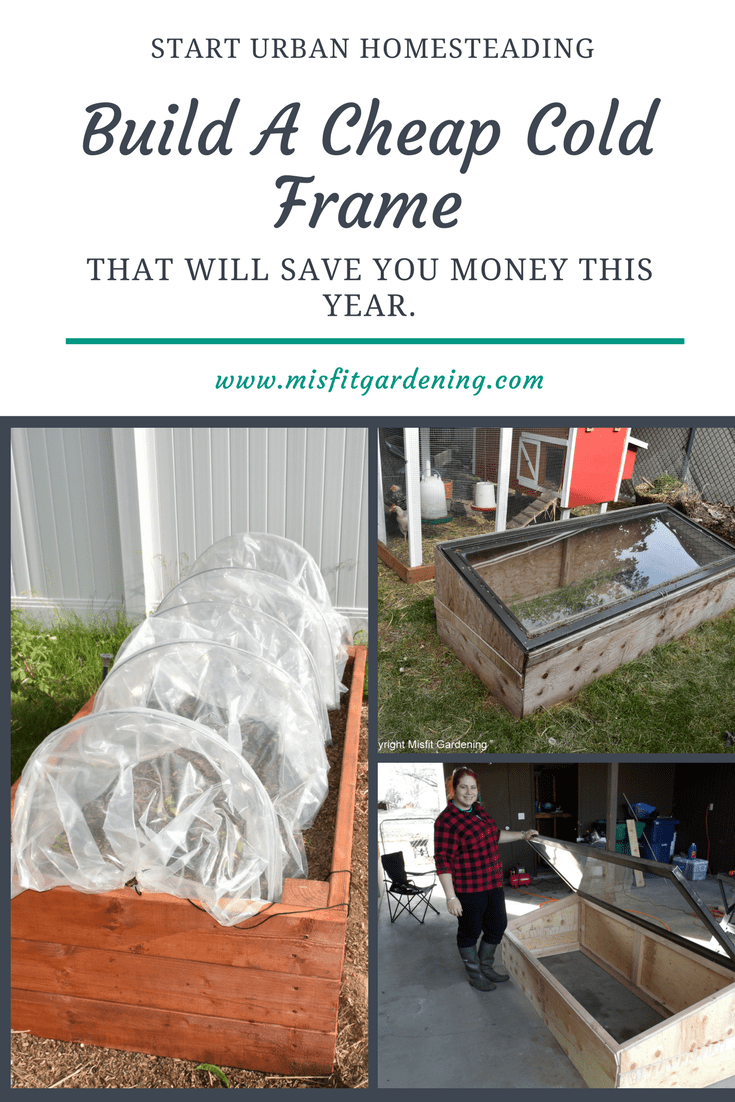 Build A Cheap Cold Frame That Will Save You Money This Year