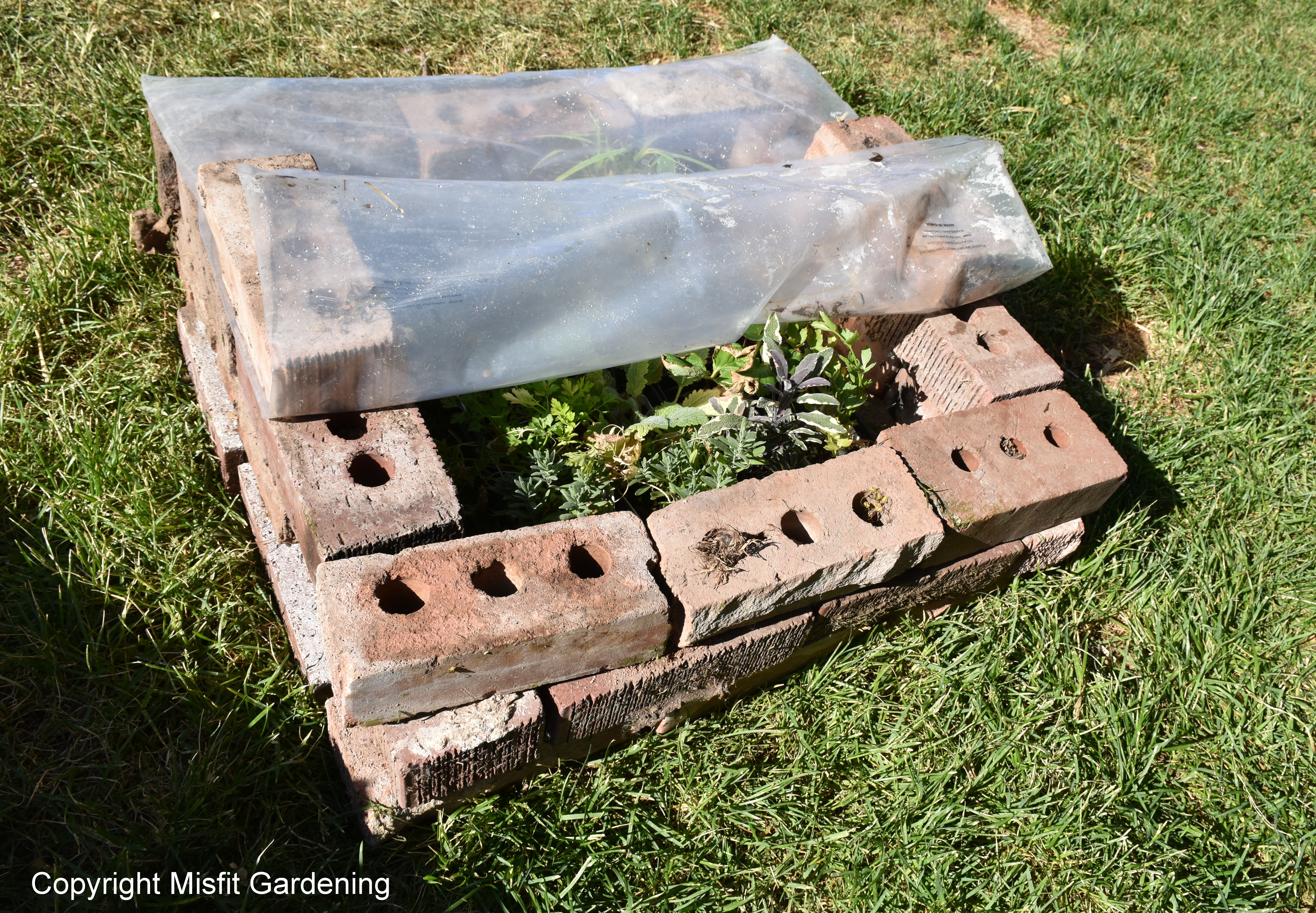 Old Fashioned Cold Frame Ornament - Framed Art Ideas - roadofriches.com
