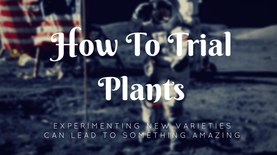 why to trial new plants