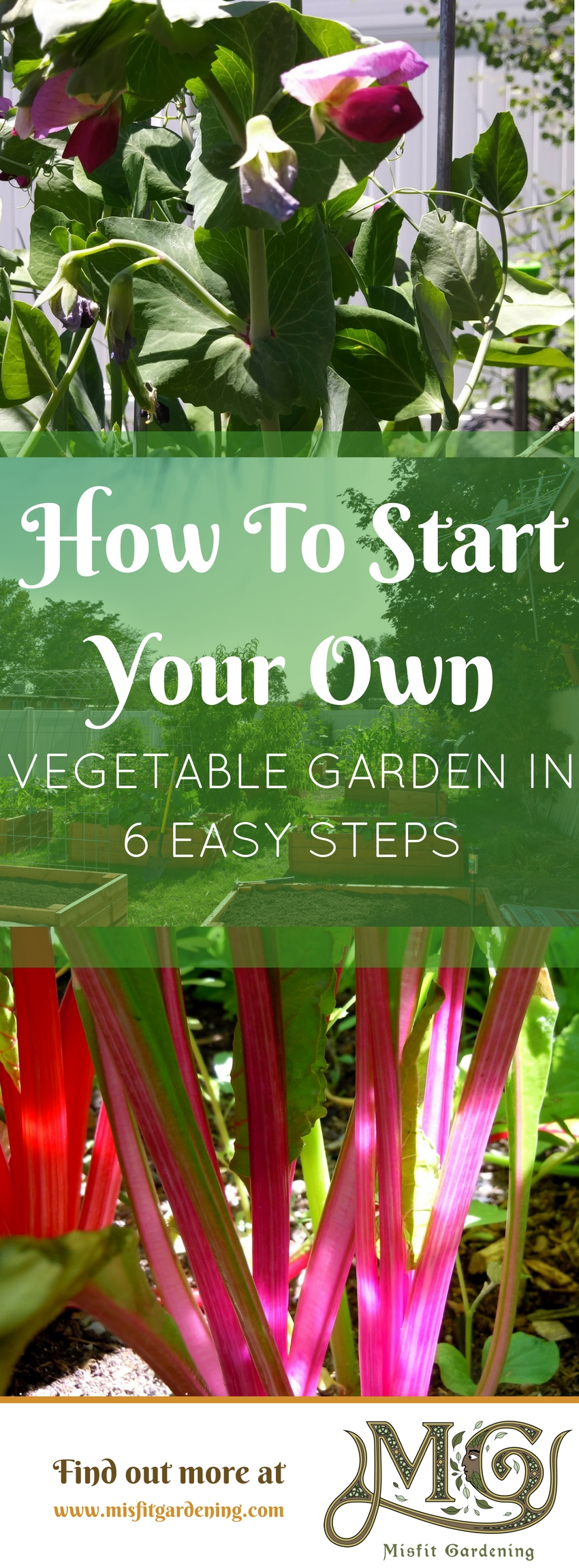 Find Out How To Start A Vegetable Garden From Scratch And Grow Your Very  Own Veg