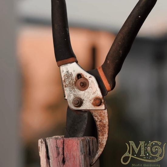 Saatgut sparende Werkzeuge