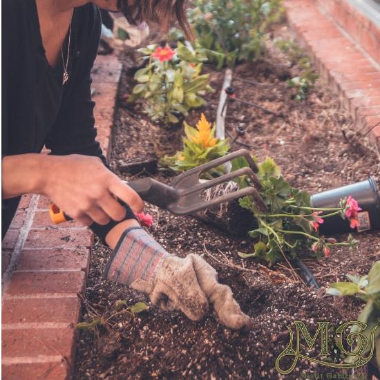 Werkzeuge zur Saatguteinsparung