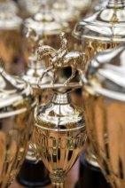 JF19Horses_Trophy