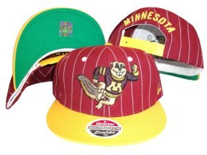 ZHATS Minnesota Gophers Super Pinstripe Snap Back Hat