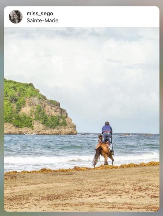 Course de chevaux sur la plage de Sainte-Marie - Martinique