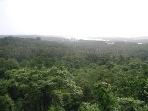 Goa…Goan…Gone