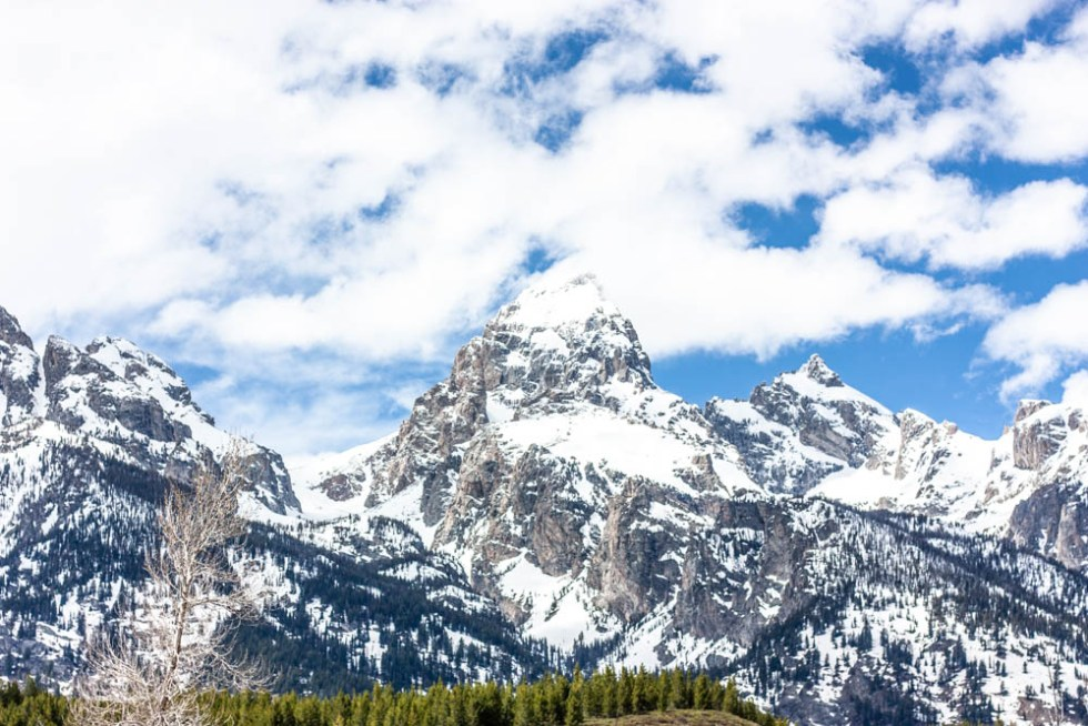 A Foodies Guide to Jackson Hole, Wyoming